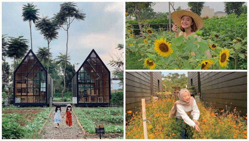Arumdalu Farm Serpong, Taman Bunga Matahari Tengah Kota Tangerang – Opsi Tempat Liburan Akhir Pekan yang Menyenangkan!