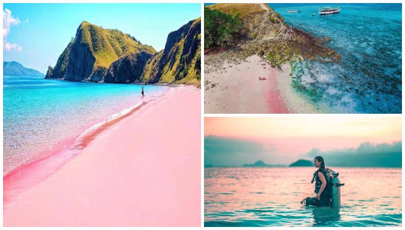 Pink Beach, Objek Wisata Epik Romantis di Lombok yang Wajib Dikunjungi Bareng Pasangan!
