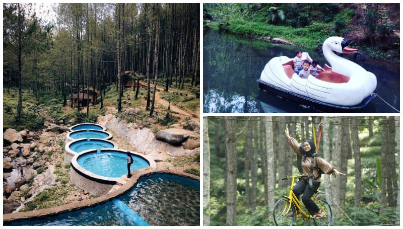 Kampung Ciherang, Objek Wisata Hutan Pinus dan Kolam Renang Unik di Sumedang – Banyak Kegiatan Seru Lainnya Loh!