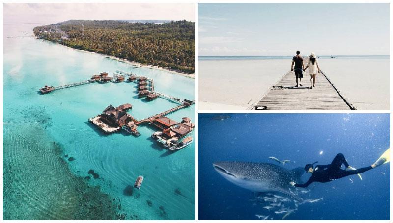 Pulau Derawan, Pesona Objek Wisata Bahari Kalimantan yang Jadi Unggulan – Keindahan Bawah Lautnya Bikin Siapa Saja Jatuh Cinta!