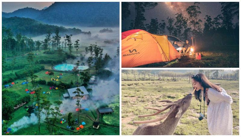 Ranca Upas, Tempat Rekreasi Di Hutan Lindung Ciwidey yang Punya Fasilitas Spot Camping dan Penangkaran Rusa Jawa!